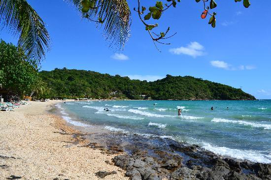 Ao Prao Resort : spiaggia bassa marea