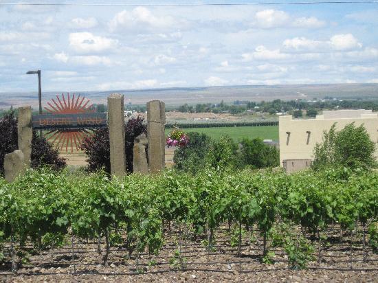 Desert Wind Winery: Desert Wind