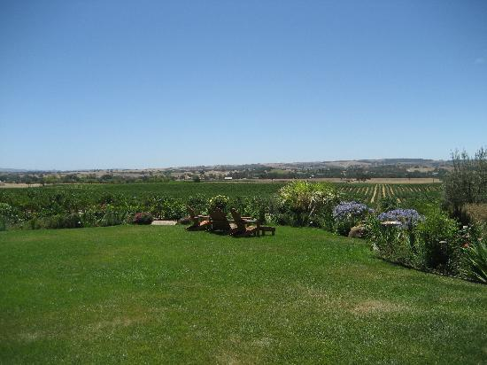 Still Waters Vineyards: Lawn and English Garden overlooking their vines.