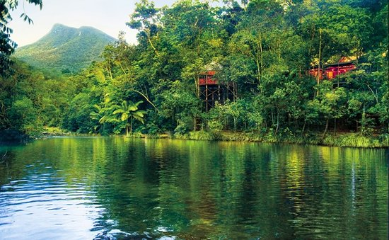 Silky Oaks Lodge: Silky Oaks main lodge situated in the majestic rainforest mountains of the Daintree National Par