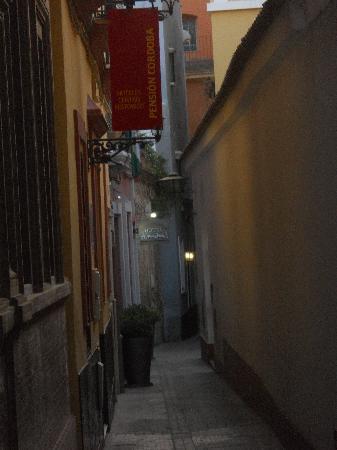 Hotel Amadeus: Street hotel is on