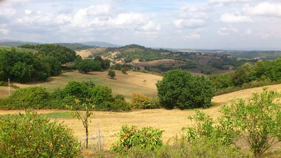 Podere Monti: One of the views from the villa