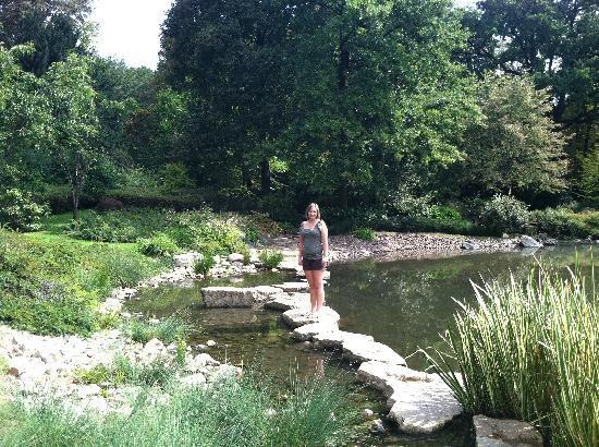 Japanese Garden - Szczytnicki Park: Rock path