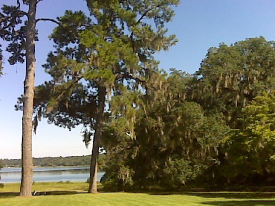 Alfred B. Maclay Gardens State Park: front yard