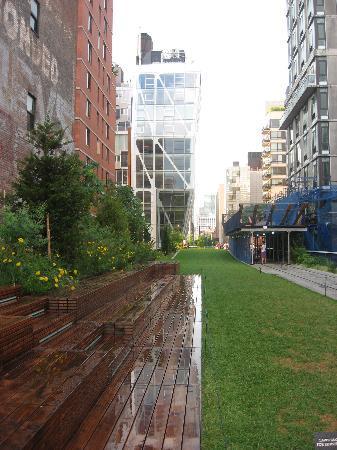 ไฮไลน์: View from the High Line