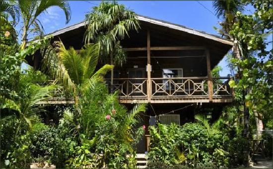 Bananarama Beach and Dive Resort: beachside cabanas
