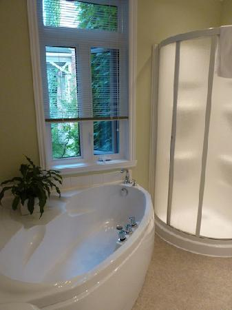 Acacias Bed & Breakfast : The bathtub/shower in Acacias room #3