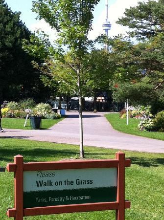 Parc des Îles de Toronto : READ:  Please!  Walk on the Grass.  Gotta love Canada!