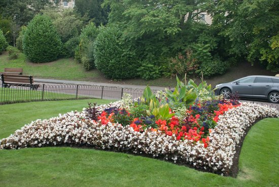 Royal Victoria Park : Fantastic garden beds