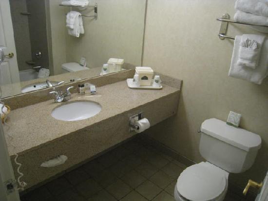 Wingate by Wyndham Missoula Airport: Bathroom Vanity