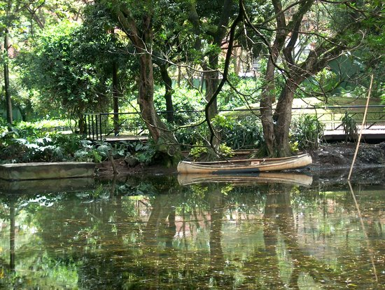 Jardin botanico de medellin all you need to know before for Botanico jardin