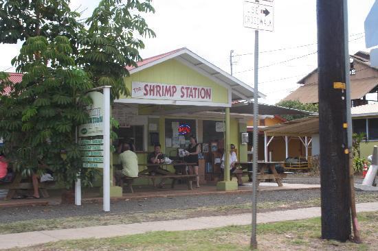 Shrimp Station!