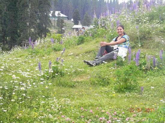 Gulmarg Alpine Guides: near starting point if gondala ride