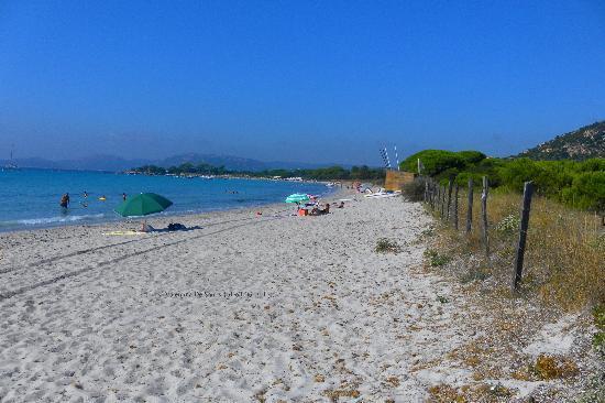 Plage de Palombaggia: la spiaggia