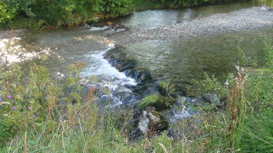 Limefitt Holiday Park: stream running through site
