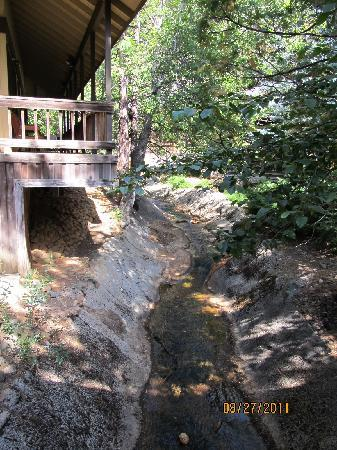 Mountain Retreat Resort: This stream runs near units 11 & 12