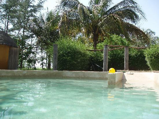 Djidjack : Swimming pool