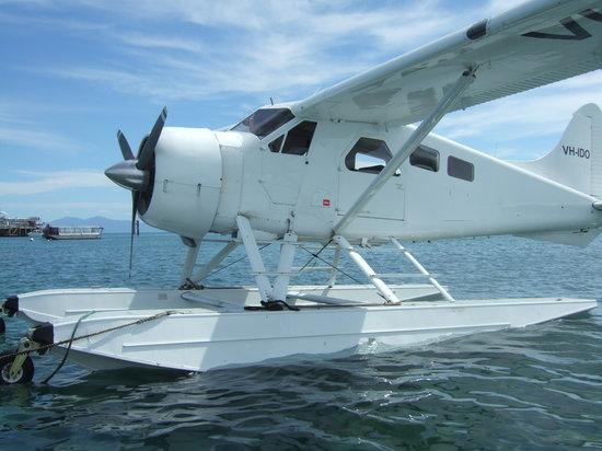 Cairns Seaplanes: The Seaplane