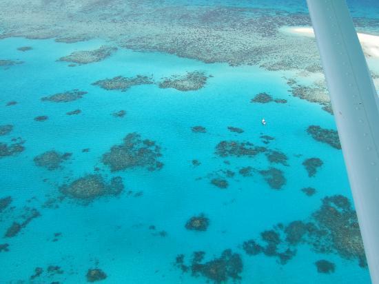 Cairns Seaplanes: Gorgeous colours!!