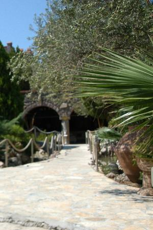Kalem Adasi Oliviera Resort: wiev from the hotel