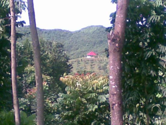 Zastat Holiday Resort : view 1