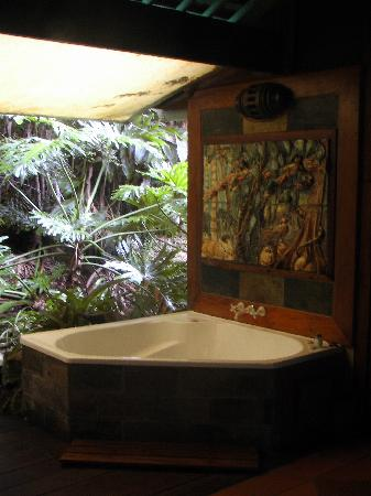 Amazing Wollumbin Palms Retreat at Mt Warning: Anyone for a spa?