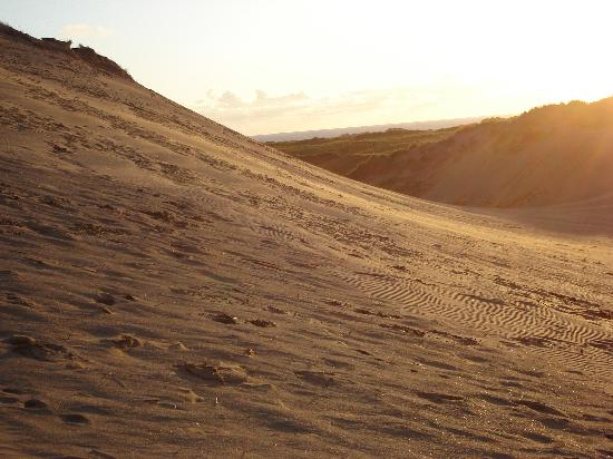 The Brookfield: Braunton Burrows at sunset