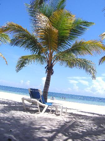 Coral Costa Caribe All Inclusive, Juan Dolio: The beach