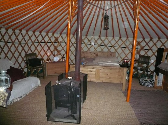 Hittisleigh, UK: Orchard Yurt