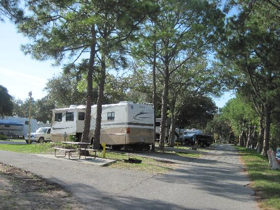 St. Augustine Beach KOA: typical RV site