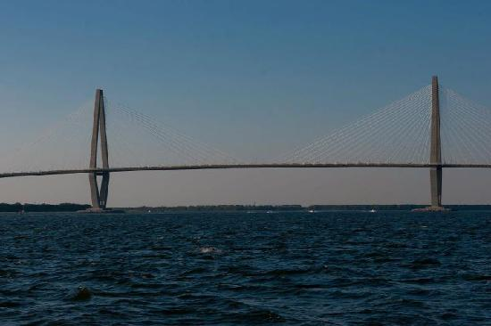 Captains Source Tours: Cooper River Bridge view from the harbor
