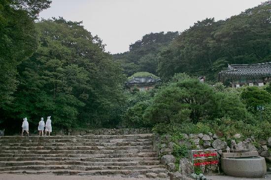 Gyeongju, Zuid-Korea: 広場からソックラムを望む