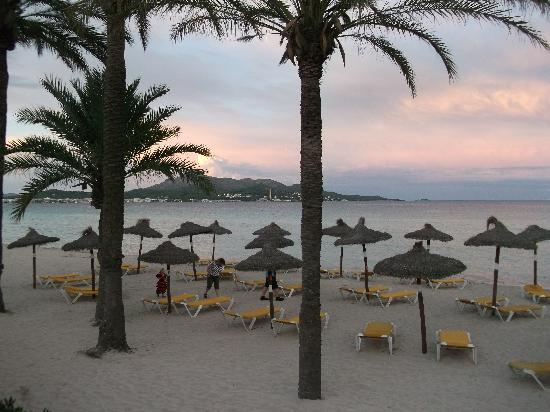 Hotel Condesa de la Bahia: Sunset on beach