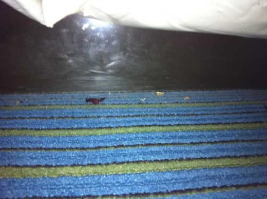 Holiday Inn Express At JFK: Am Bettsockel die hinterlassenschaften diverser vorgänger...