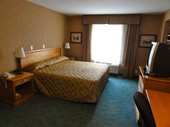 Econo Lodge Inn & Suites University: Zimmer