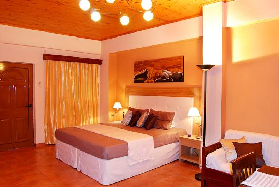 AnnaView Apartments: Spacious bedroom with king size bed.