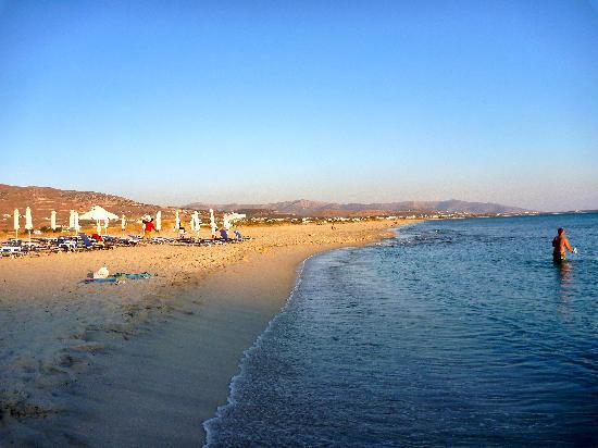 Coralli Beach Apartments: Spiaggia fronte Coralli al tramonto