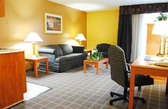 Baymont Inn & Suites Florida Mall: Living Room (Suite)