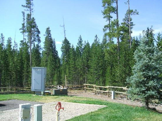 Yellowstone Grizzly RV Park: Back corner of campground.