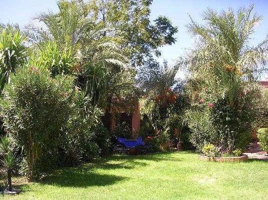 Villa Dar Zina: Le jardin avec son BBQ (calèche)