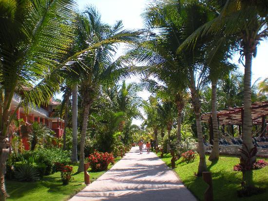 Barcelo Maya Caribe: The hallway to the Ocean