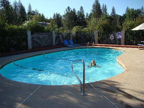 Neu Lodge Motel : clean pool