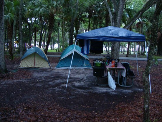 Manatee Hammock Campground: Tent site