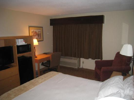 Ramada Spirit Lake/Okoboji: Another view of the room & desk area