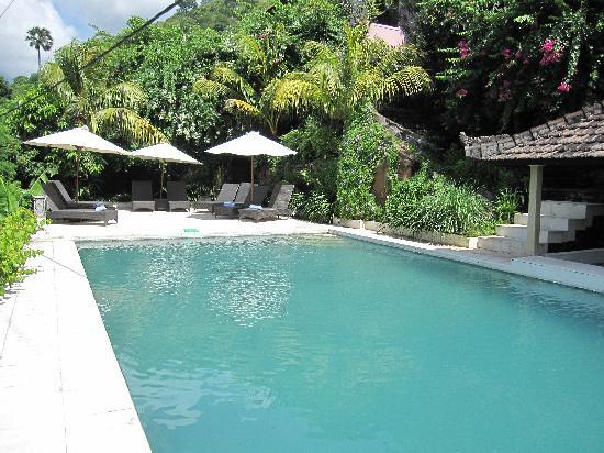 Baliku Dive Resort: Swimming pool