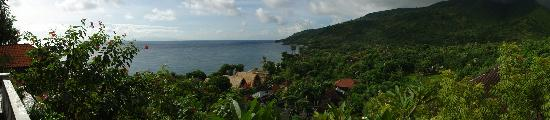 Baliku Dive Resort: View from our villa