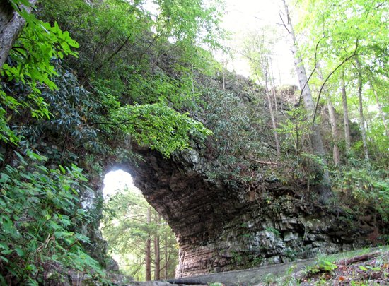 Shady Valley, TN: Backbone Rock