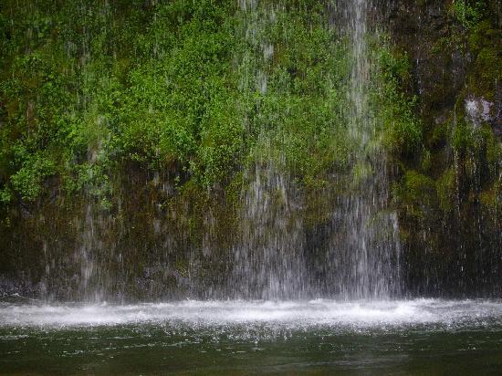 Mossbrae Falls: Mossbrea falls