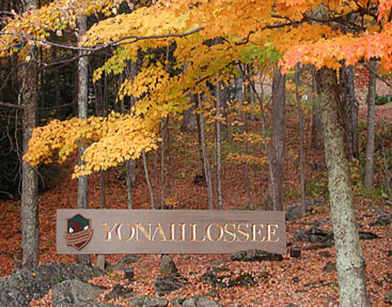 ‪‪Yonahlossee Resort Accommodations‬: Fall color at Yonahlossee Resort‬