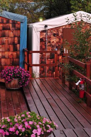 Denali Park Salmon Bake Cabins: economy cabin